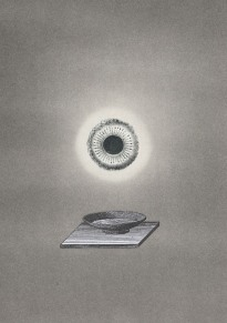 collage, Thaddée, collection particulière