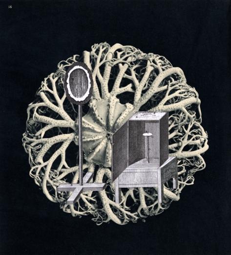 Thaddée, collage sur papier,23,4 x 21,2 cm, collection particulière