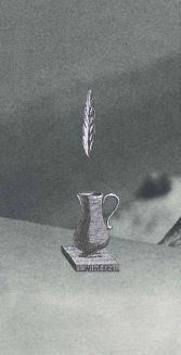 Nature morte à la plume, Thaddée, collage sur papier, juillet 2015, collection particulière